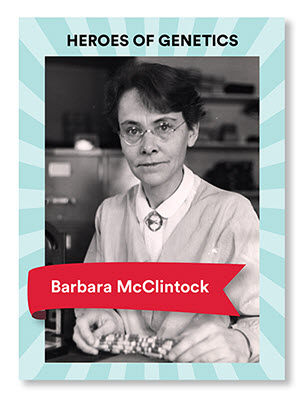 Barbara McClintock Blog Veritas Intercontinental