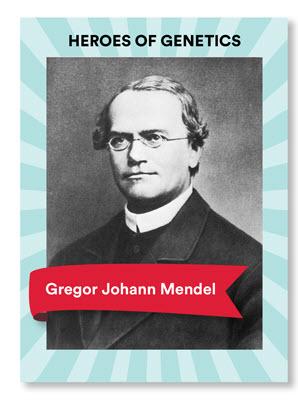 Gregor Mendel Blog Veritas Intercontinental