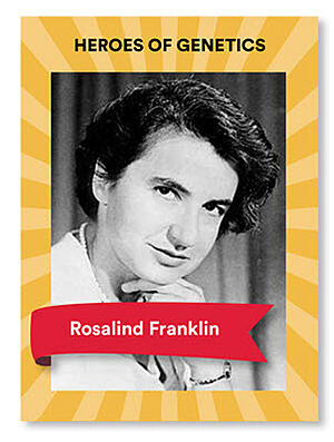 Rosalind Franklin Blog Veritas Intercontinental
