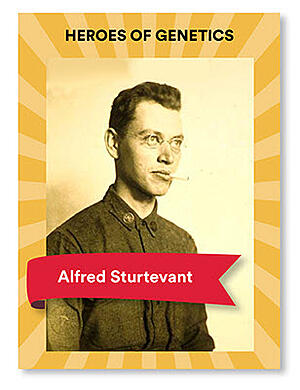 Alfred-Sturtevant-blog-Veritas-Intercontinental